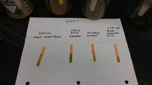 pH measurements from soil, bird manure, composted horse manure, and kitchen compost.