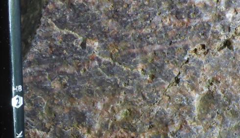 Prairie Creek rocks.