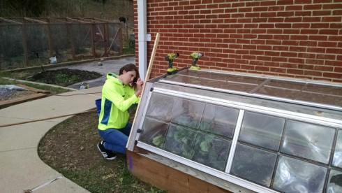 Assembling the side panel for the cold-frames. The front and top plastic panels were salvaged from our aluminum-framed greenhouse.