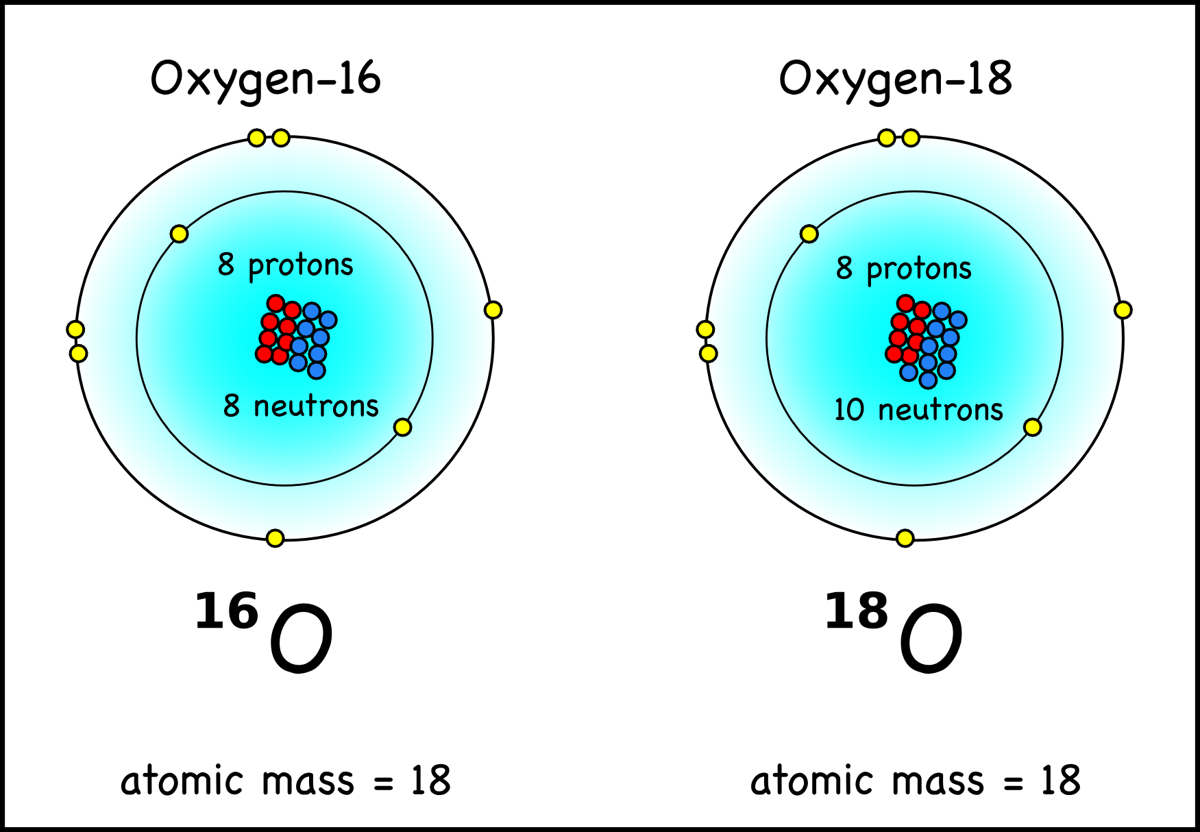 oxygen 18 has two more neutrons than the much more common oxygen 16