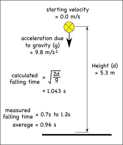 experiment to find the acceleration due to gravity using free fall essay Freefall:acceleration due to gravity essays: theory all dense objects in free fall have the same acceleration in this experiment, we were trying to find the relationship between the amount of force and acceleration of an object.