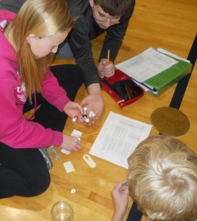Build A Dna Molecule Game